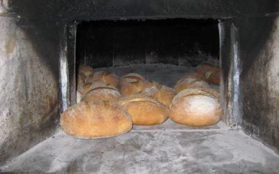 Pekli smo kruh